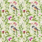 Cute bird in spring wild herbs, flowers. Seamless pattern. Royalty Free Stock Photos