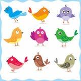 Cute Bird Vector Stock Photo