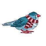 cute bird warm dressed in winter season Stock Image