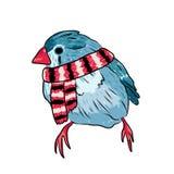 cute bird warm dressed in winter season Stock Photography