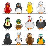 Cute birds Royalty Free Stock Photography