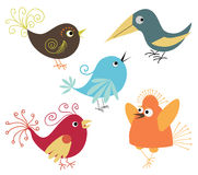 Cute birds. Set of cute colorful birds Stock Photography