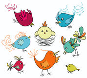 Cute birds Royalty Free Stock Images