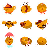 Cute birds Stock Images