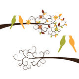Cute Birds on Branches Stock Image