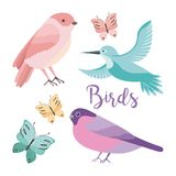 Cute birds butterflies decoration natural Royalty Free Stock Photography