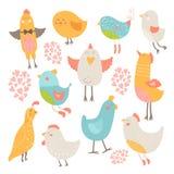 Cute birds collection Royalty Free Stock Photos