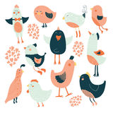 Cute birds collection Royalty Free Stock Photo