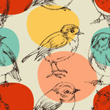 Cute birds pattern Stock Photos