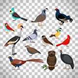 Cute birds set on transparent background. Cute birds set isolated on transparent background, vector illustration stock illustration