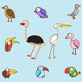 Cute birds set. Various colorful birds set.Vector is eps 10 Stock Image