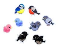 Cute Birds Set Vector Illustration. Cute Birds Royalty Free Stock Image