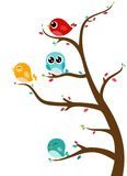 Cute Birds on trees Stock Photos