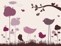 Cute birds vector Stock Photos
