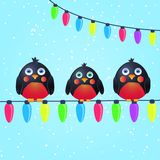 Cute Birds on Wire with Christmas Light Bulbs Royalty Free Stock Image