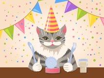 Cute birthday cat. Cute grey cat celebrating its birthday Stock Photo