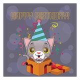 Cute birthday greeting with gray cat. Cute birthday greeting with little gray cat Royalty Free Stock Photos