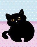 Cute black cat Stock Photography