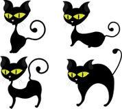 Cute black cat Royalty Free Stock Photos