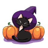 Cute black cat in a hat and pumpkins Stock Photography