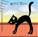 Cute black cat on the roof Royalty Free Stock Photos
