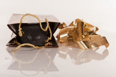 Cute black kitten in gold gift bag Royalty Free Stock Photo