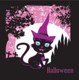 Cute black kitten wizard Stock Photo