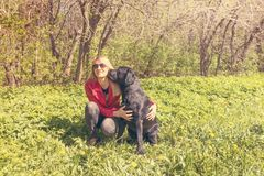 Labrador dog kissing a woman. Cute black labrador dog kissing a woman in a summer green park stock photography