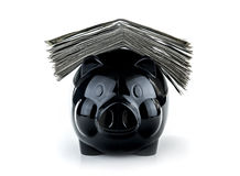 Cute black piggybank. With pile of cash on it isolated on white background, successful business, savings of money concept Stock Image