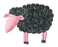 Cute black sheep. Acrylic illustration of cute black sheep Royalty Free Stock Image
