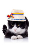 Cute black and white cat with hat Royalty Free Stock Image