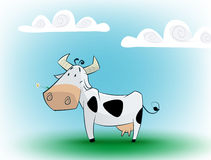 Cute black and white cow eating daisy. Royalty Free Stock Photos