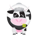 Cute black and white cow with a four-leaf clover. Illustration of black and white cow with a four-leaf clover in the mouth Royalty Free Stock Photo
