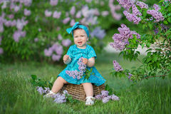 Cute blond baby girl enjoying time on a awesome place between lilac syringe bush.Young lady with basket full of flowers dressed in. Jeans and stylish shirt Stock Photography