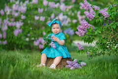 Cute blond baby girl enjoying time on a awesome place between lilac syringe bush.Young lady with basket full of flowers dressed in. Jeans and stylish shirt Stock Photo