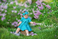 Cute blond baby girl enjoying time on a awesome place between lilac syringe bush.Young lady with basket full of flowers dressed in. Jeans and stylish shirt Royalty Free Stock Photo