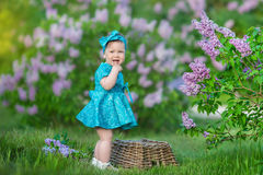 Cute blond baby girl enjoying time on a awesome place between lilac syringe bush.Young lady with basket full of flowers dressed in. Jeans and stylish shirt Stock Images
