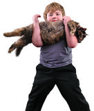 Cute blond boy with a cat over white Stock Photos