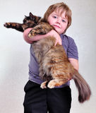 Cute blond boy with a cat Royalty Free Stock Image