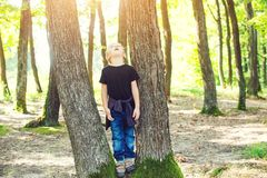 Cute blond boy playing between tree trunks in sunny park. Royalty Free Stock Image
