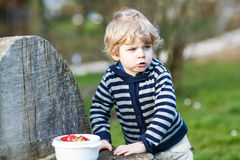 Cute blond boy of two years eating strawberries outdoors Stock Photo