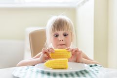 Cute blond caucasian girl holding in hand tasty boiled sweet corn cob and lokking on it with amazed wide opened eyes. Child loves. Eating  yellow maize stock images