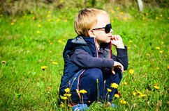 Cute blond child  withs dandelions Royalty Free Stock Photos