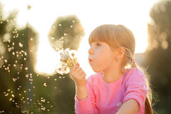 Cute blond little girl blowing a dandelion Stock Images