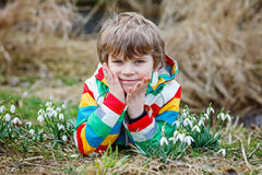 Cute blond preschool kid boy discovering first spring flowers, beautiful snowdrops Stock Image