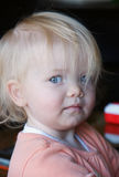 Cute blond toddler. Portrait of cute toddler with blond hair Stock Image