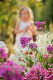 Cute blonde child girl silhouette in summer blooming garden Royalty Free Stock Image