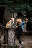 Cute blonde Girl in cool jeans jacket take a selfie in park with her dog, border collie royalty free stock photo