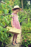 Cute, blonde girl in the garden Royalty Free Stock Photo