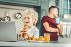Cute blonde-haired boy eating croissant and watching cartoons. Croissants and cartoons. Cute blonde-haired boy eating croissant and watching cartoons while royalty free stock image
